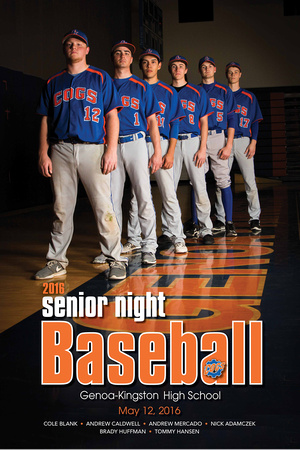Baseball Senior poster 16x24